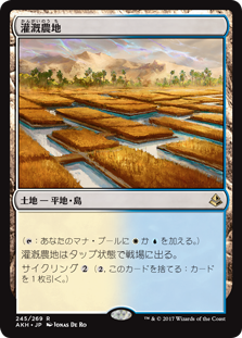 (AKH-RL)Irrigated Farmland/灌漑農地
