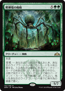(GRN-RG)Hatchery Spider/孵卵場の蜘蛛