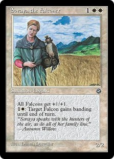 (HML-UW)Soraya the Falconer